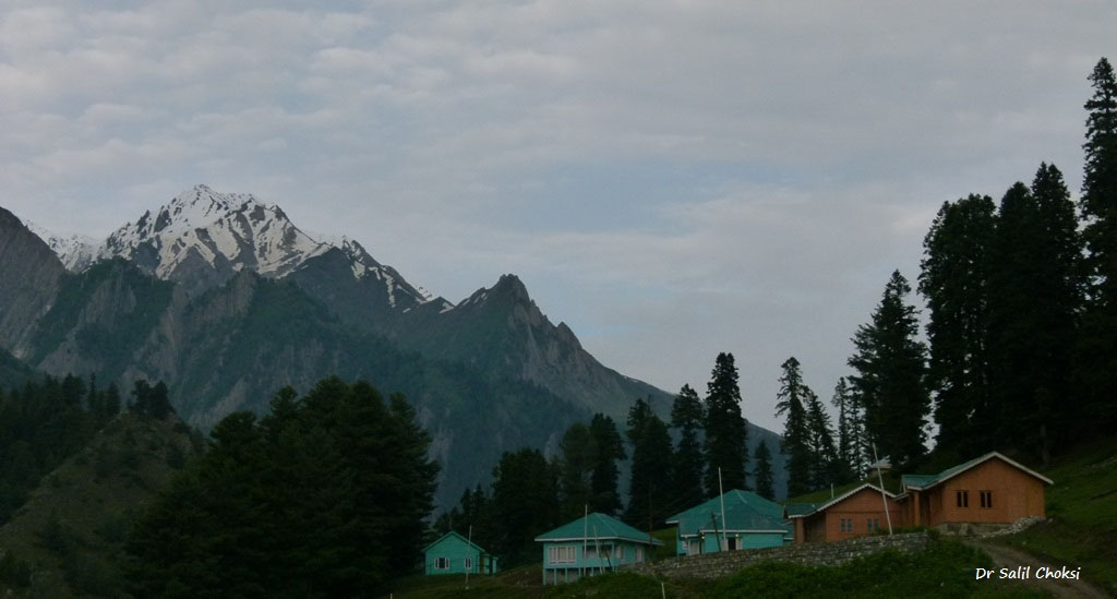 Drive Srinagar to Leh